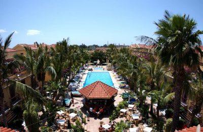 piscina y palmeras